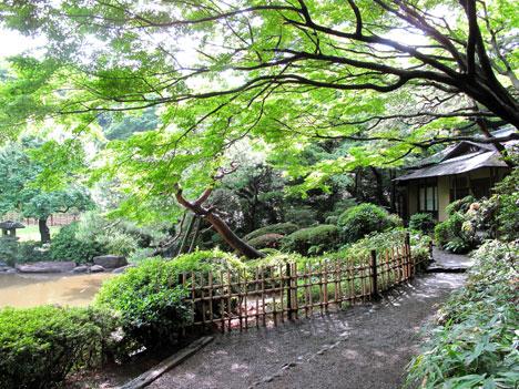 東京都庭園美術館茶室